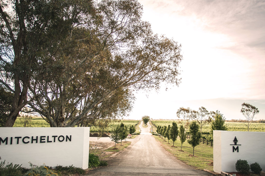 Mitchelton Wines entry to Goulburn winery in Nagambie