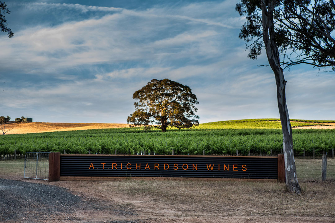 A.T. Richardson Wines welcome sign and vines