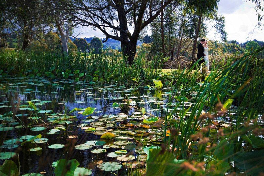 Wild Cattle Creek Estate wedding and pond